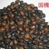 供应优质、高发芽率国槐籽 - 山西运城绛县古绛镇