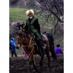 新疆伊犁哈萨克自治州新源县吐尔根乡杏花沟里的3万亩千年原始野杏花相继绽放